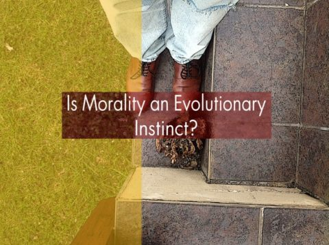 How did Evolution produce moral law?