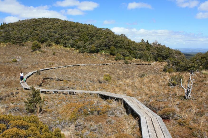 Walkway near Mt Ruapehu in New Zealand