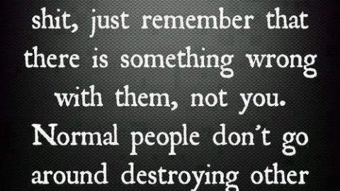 Normal people don't destroy others